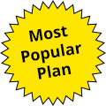 most popular spelling plan